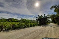 Lot for Sale in Consolacion, Cebu