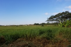 Lot for Sale-Cabuyao, Laguna